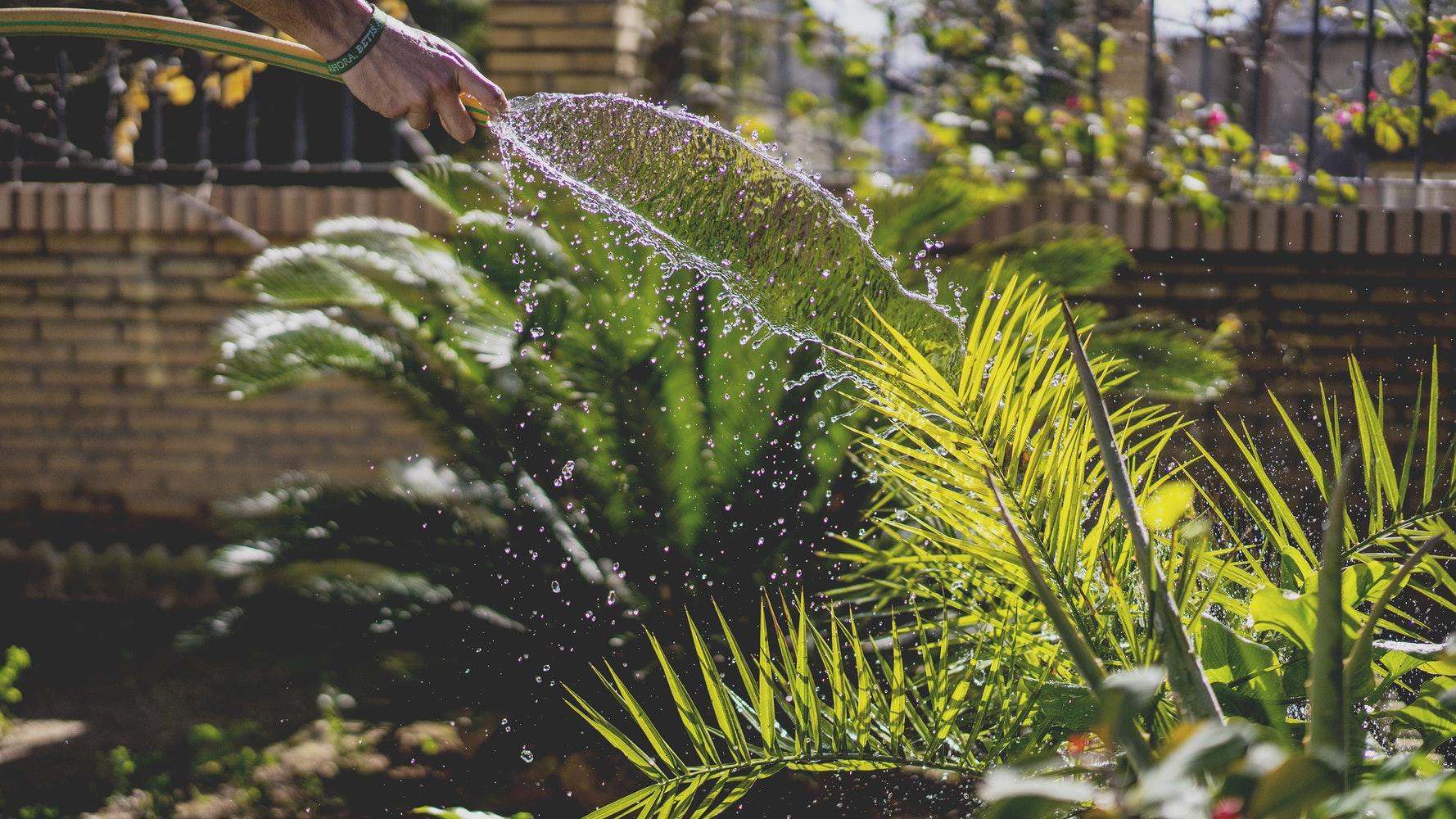 Tuin Laten Aanleggen : Tuin laten aanleggen door hoveniersbedrijf gebr. van klaveren